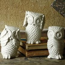 White Hear, See, and Speak No Evil Owls by Kalalou See No Evil, My Dream Home, House Design, Sweet Home, New Homes, Ceramic Owl, Origami Owl, Owl Always Love You, Cute Owl