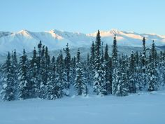 Alaska Range near Tok, Alaska