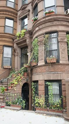 Brownstone, Harlem, NYC Yes, please. Brownstone Homes, New York Brownstone, Brooklyn Brownstone, Beautiful Architecture, Beautiful Buildings, Beautiful Homes, Harlem Apartment, New York City Apartment, New York Vacation