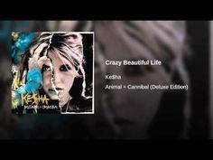 Crazy Beautiful Life