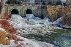 Elk Rapids Michigan 1