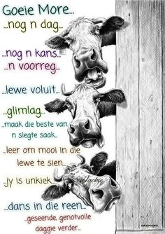 This item is unavailable Good Morning Good Night, Good Morning Wishes, Good Morning Quotes, Lekker Dag, Evening Greetings, Goeie More, Afrikaans Quotes, Special Quotes, Books