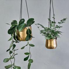 Zinc Planters, Metal Hanging Planters, Brass Planter, Large Planters, Concrete Planters, Hanging Plants, Hanging Picture Frames, Hanging Pictures, House Plants Decor