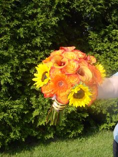 Fall Weddings:  For an orange and yellow wedding I used sunflowers, gerber daisies, calla lilies, and Circus roses for this bride's bouquet. I striped the wrap around the stems.  Designed by WhimsicalWelcomes.com