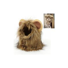 Little Ear Wig Cap Pet Cat Dog Funny Lion Hat Puppy Buckle Grooming... ($7.08) ❤ liked on Polyvore featuring white