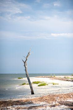 beach. daufuskie island.