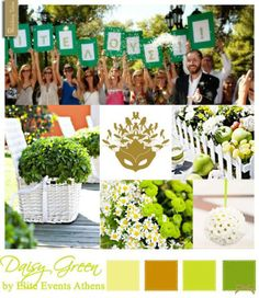Daisy Green Wedding moodboard, by Elite Events Athens . Wedding Mood Board, Green Wedding, Athens, Mood Boards, Daisy, Events, Inspirational, Table Decorations, Home Decor