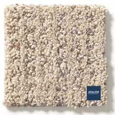 Anderson Tuftex Park West Pet Friendly Carpet shown in the Nomadic color | Available at Avalon Flooring | Starting at $3.79/square foot | #andersontuftex #carpet #petfriendlycarpet #carpeting