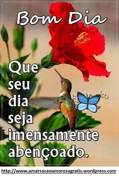 bom dia! Good Morning Flowers, Good Morning Images, Good Morning Quotes, Bible Psalms, Portuguese Quotes, Peace Love And Understanding, Holidays And Events, Beautiful Landscapes, Peace And Love