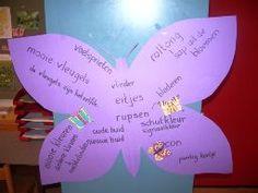 * Woordveld: vlinder