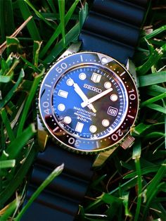 Seiko Marinemaster 300 (MM300)