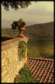 Tuscany -- Part of me just wants to follow after Eat, Pray, Love and take an adventure I would never regret.