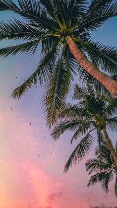 25+ Summer Wallpapers
