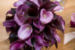 Wedding, Flowers, Purple, Bouquet, Calla, Lily, Lillies