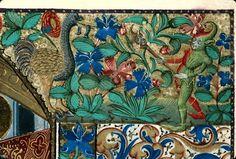 Autruche Heures à l'usage de Rouen 1460 Aix en Provence BM ms022