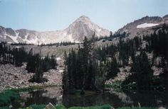 Summiting the Pfeifferhorn in summer from Red Pine or Maybird Gulch