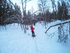 No nosso último dia em Tromso, queríamos aproveitar ao máximo o tempo e decidimos fazer uma actividade nova para nós, uma caminhada usando raquetes de neve.
