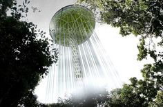 Rainforest Guardian Skyscraper consists of a water tower, a forest fire station, a weather station, and scientific research and education laboratories. Eco Architecture, Architecture Magazines, Rainwater Harvesting, Water Tower, Exhibition Space, Green Building, Sustainable Design, Competition, Skyscrapers