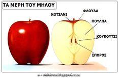 Autumn Crafts, Autumn Activities, Art For Kids, Apple, Education, Food, Kindergarten, Google Search, Fruits And Veggies
