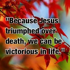 WE ARE VICTORIOUS