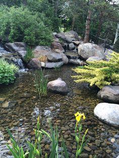 Most Natural Waterfall Ideas to Upgrade Your Landscape View Garden Pond Design, Bog Garden, Water Garden, Natural Waterfalls, Natural Pond, Backyard Water Feature, Ponds Backyard, Amazing Gardens, Beautiful Gardens