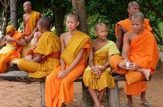Jeunes moines boudhistes en toge orange