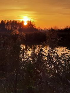 Holland, Celestial, Sunset, Outdoor, The Nederlands, Outdoors, The Netherlands, Netherlands, Sunsets