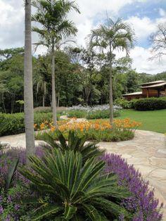 ITAIPAVA_WF | Landscape