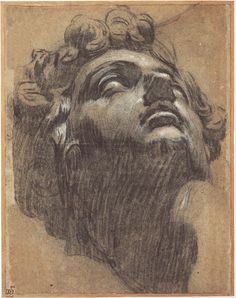 jacopo tintoretto (1518-1594) - head of giuliano de' medici, after michelangelo; black and white chalks on brown paper