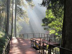 98 best zigra wisata images trips vacations viajes rh pinterest com