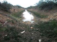 SOBRADINHO: PEQUENOS AGRICULTORES/AS SOFREM COM A FALTA D'ÁGUA NO CANAL DA BATATEIRA - #LEIAMAIS WWW.OBSERVADORINDEPENDENTE.COM