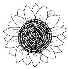 coloring pages flowers - Google Search