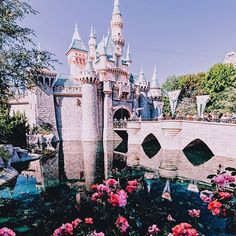 Disneyland sleeping beauties castle photo disney
