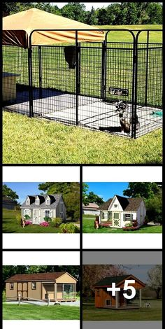 Terrific Photographs Clever Designs of How to Build Backyard Dog Kennel Idea. Terrific Photographs Clever Designs of How to Build Backyard Dog Kennel Ideas – Simphome Tip Dog Kennel Cover, Diy Dog Kennel, Kennel Ideas, Dog Kennel Flooring, K9 Kennels, Portable Dog Kennels, Backyard Buildings, Dog Furniture, Outdoor Dog
