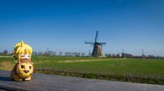 Saber enjoying Dutch Windmills ^^