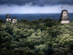 Storm in Tikal (Peten, Guatemala. Mayan Ruin Rising Above the Jungle in Guatemala