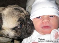 ¿Que puede haber mas tierno que niños con sus mascotas?, son maravillosos. Y sobre todo cuando son mas pequeños, se hacen inseparables. Dejan siemp... Ver mas: http://www.mejorhistoria.com/fotografias-ninos-mascotas-adorables/