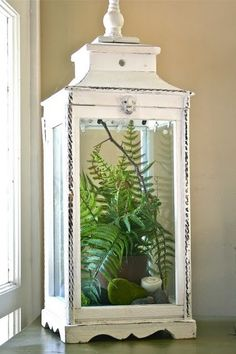 Oversized lanterns make chic terrariums.   This one has fake plants inside, but real potted plants could be   used.