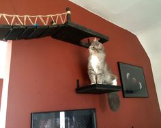 Hole cut out of platform Customization for Indiana Jones Cat Bridge (To be bought with Indiana Jones Bridge) Indiana Jones, Cat Climber, Brick Face, Plate, Pet Furniture, Diy Stuffed Animals, Cool Cats, Etsy Seller, Stuff To Buy