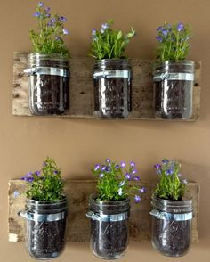 creative indoor vertical planters - Google Search