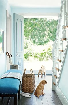 Cut Diamond by Ralph Lauren Paint brings the outdoors in, perfect for a bright entryway.