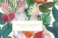 Watercolor parrots patterns by ramika on @creativemarket