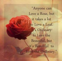 Anyone can love a rose, but it takes a lot to love a leaf. It's ordinary to love the beautiful, but it's beautiful to love the ordinary Morning Greetings Quotes, Good Morning Quotes, Rose Quotes, Flower Quotes, Finding Love Quotes, Different Quotes, Spiritual Quotes, Profound Quotes, Some Words