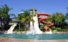 Top Family Fun Spots in Los Cabos - From a family-friendly water park near San José del Cabo, to some of the area's best beaches, here's a roundup of the top 5 activities for families vacationing in Los Cabos, Mexico. #Travel