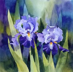 Mini Gallery Watercolour Painting by Rachel McNaughton Iris Painting, Watercolour Painting, Watercolor Flowers, Painting & Drawing, Watercolors, Art Floral, Iris Art, Flower Artwork, Iris Flowers
