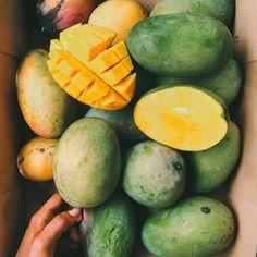 Do You Like Fruits? Follow Fruit Power!