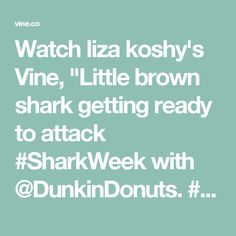 """Watch liza koshy's Vine, """"Little brown shark getting ready to attack #SharkWeek with @DunkinDonuts. #ad"""""""