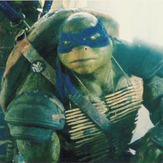 Leo my fav next to Donnie of the four turtles. Still love Mikey and Raph though :)! Ninja Turtles 2014, Teenage Mutant Ninja Turtles, Tmnt Movies, Ninja Wallpaper, 2016 Movies, Tmnt Leo, Leonardo Tmnt, Turtle Love, Cute Turtles