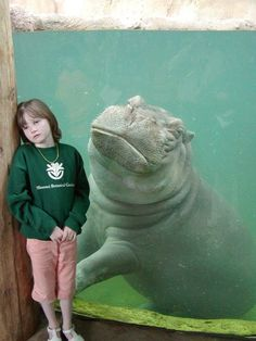 """This hippo who just gets it. 