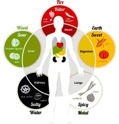 Explore Your Health & Destiny with Four Pillars & Chinese Medicine